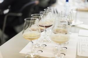 Schweizer Meisterschaft der Bier-Sommeliers 021